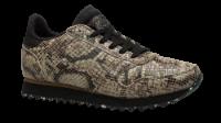Woden Wonder dame-sneaker snake WL410
